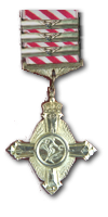 Air Force Cross & Three Bars